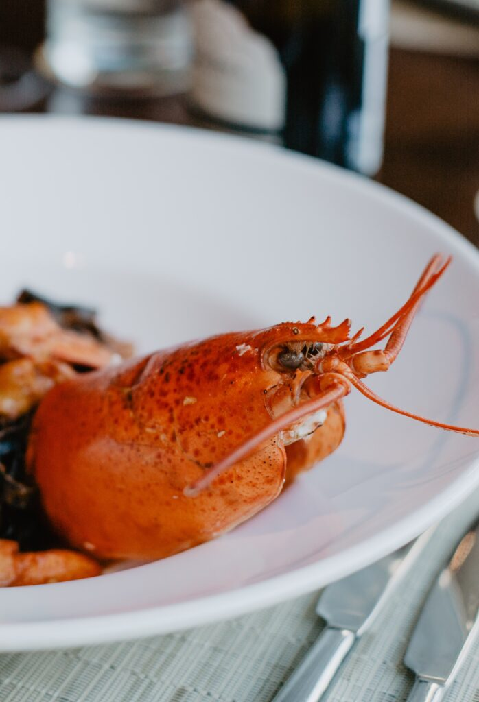 Best Time To Visit Maine For Lobster