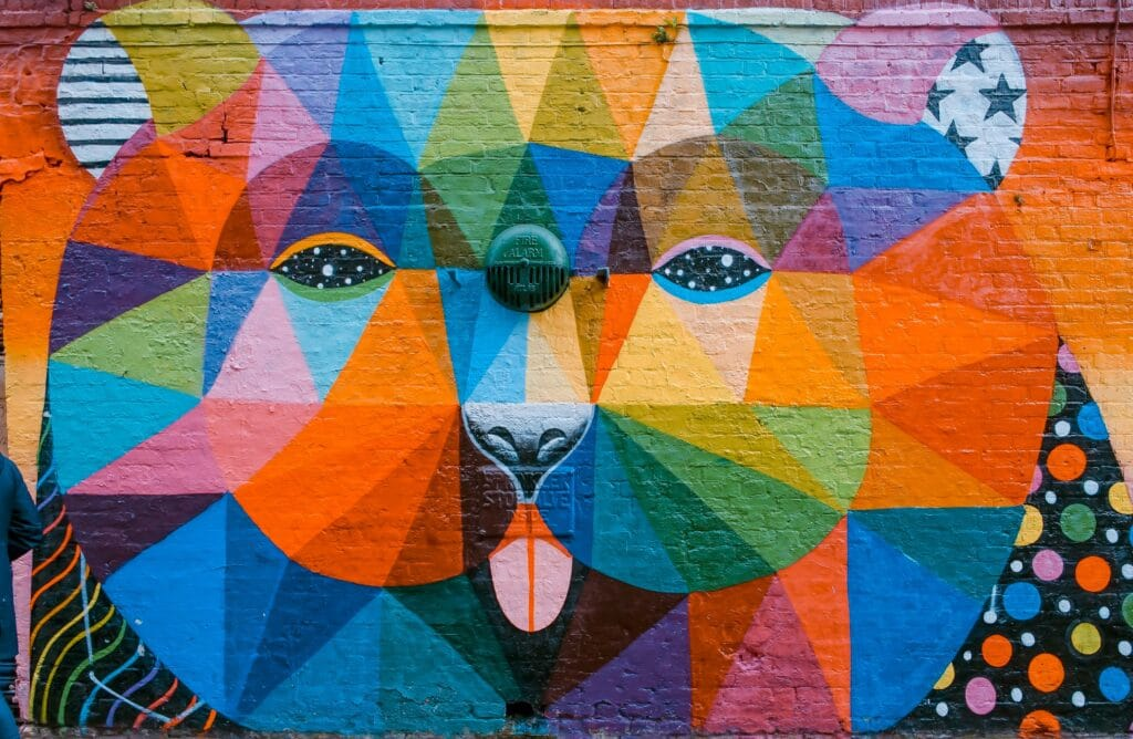 Take Photos of Vibrant Murals