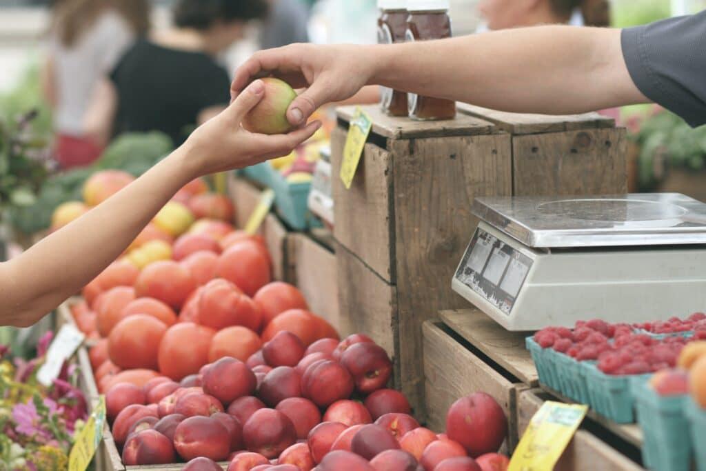 The Fayetteville Farmer's Market