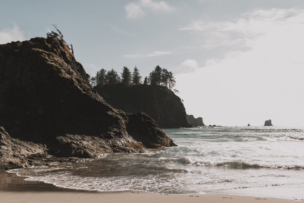 things to do in forks wa