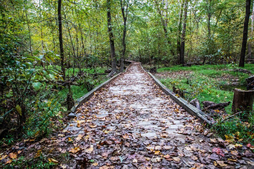 Leeslyvania State Park