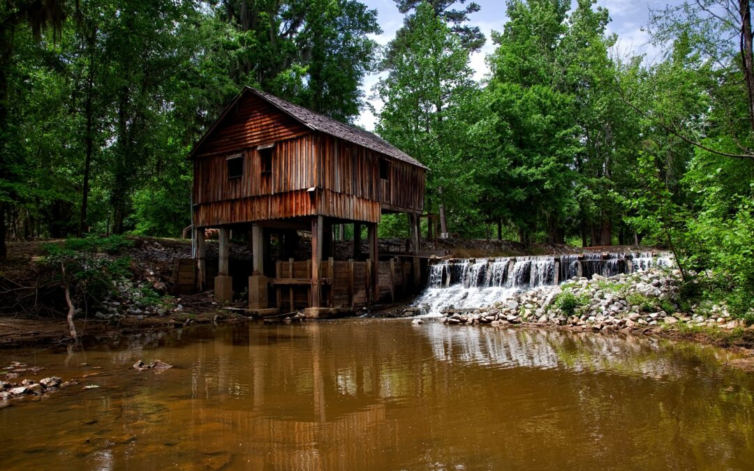8 Exciting Things to Do in Dothan AL: What You Don't Want to Miss